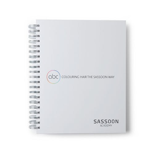 abc | Colouring Hair The Sassoon Way —