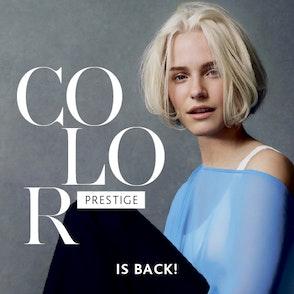 Color Prestige | IS BACK