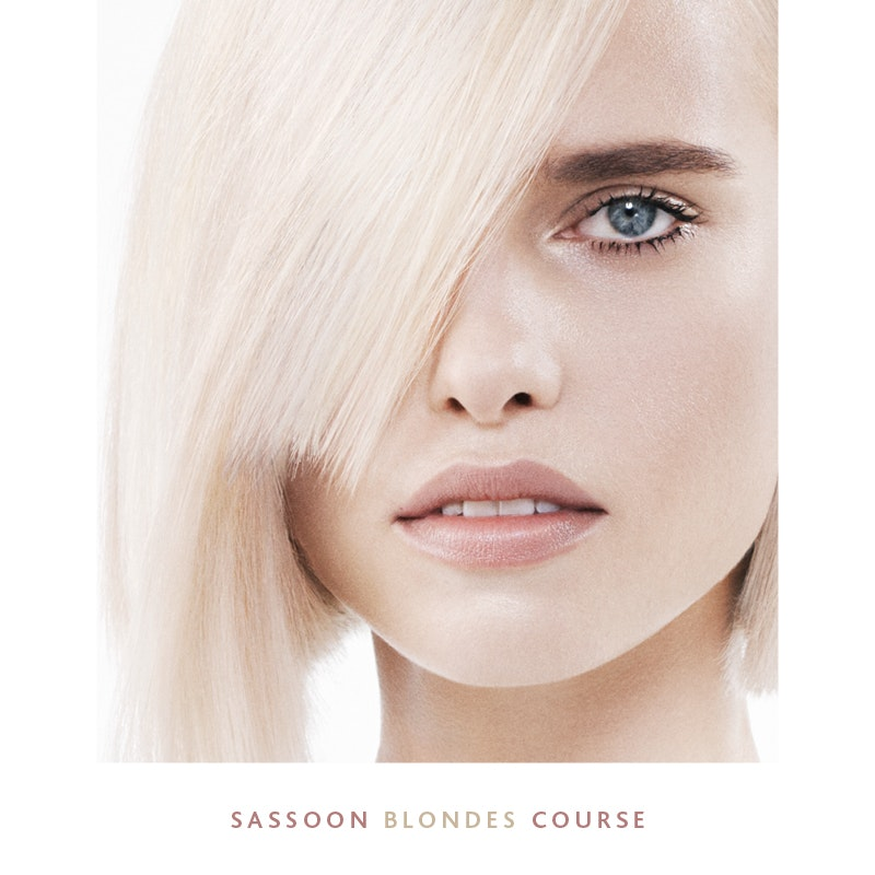 NEW | SASSOON BLONDES