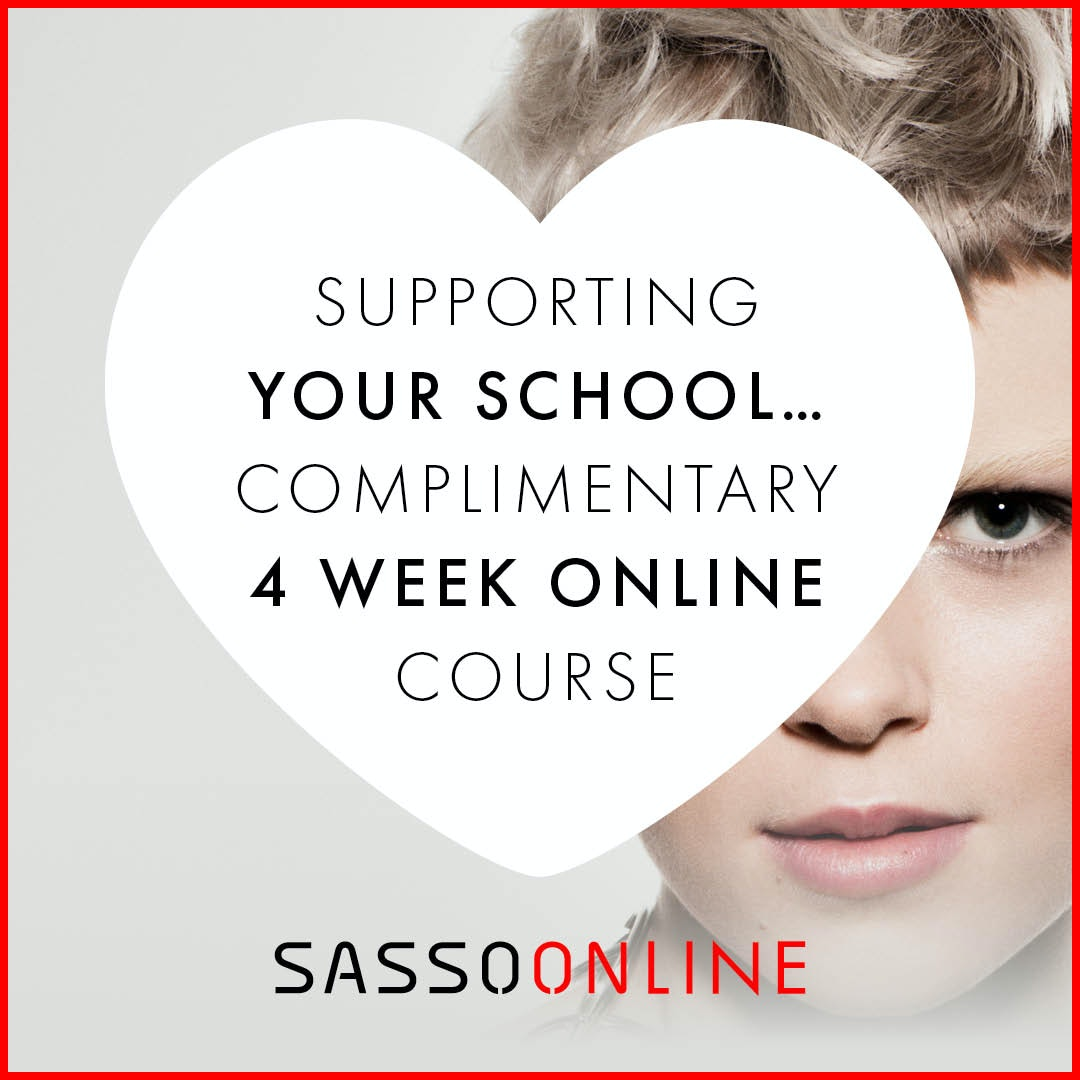COMPLIMENTARY 4 WEEK ONLINE  COURSE FOR SCHOOLS